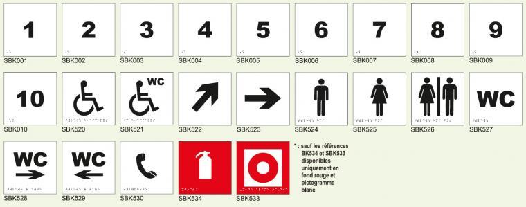 Signabraille picto standard